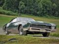 Buick-Riviera-1966-Oldtimer-Treffen-Eptingen
