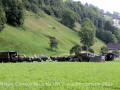 2021-Militaer-Convoy-Buochs-NW-2