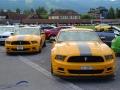 Internationales Mustang und Shelby Treffen in Zug, 5. August 2017